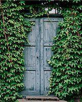 Blue door Stock Photo - Premium Royalty-Freenull, Code: 6106-06165408