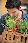 Man carrying fresh vegetables in a crate Stock Photo - Premium Royalty-Free, Artist: urbanlip.com, Code: 6108-06166667