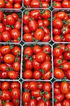 Small plum tomatoes in containers Stock Photo - Premium Royalty-Free, Artist: CulturaRM, Code: 614-06169175