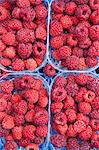 Raspberries in containers Stock Photo - Premium Royalty-Free, Artist: Alberto Biscaro, Code: 614-06169184