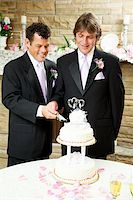 Two handsome grooms cutting their wedding cake. Stock Photo - Royalty-Freenull, Code: 400-06172882