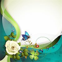 Background with rose, butterfly and drops of water Stock Photo - Royalty-Freenull, Code: 400-06173464