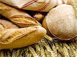 bread on golden wheat Stock Photo - Royalty-Free, Artist: crisp                         , Code: 400-06174034