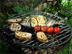 Bream on the barbeque Stock Photo - Premium Royalty-Freenull, Code: 659-06184744