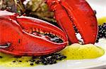 Lobster, caviar and oysters on plate (close-up) Stock Photo - Premium Royalty-Free, Artist: Cultura RM, Code: 659-06185368