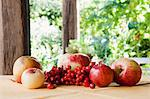 An arrangement of apples, rosehips and rowan berries Stock Photo - Premium Royalty-Free, Artist: CulturaRM, Code: 659-06186856