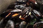 Steamed Irish mussels Stock Photo - Premium Royalty-Free, Artist: Ikonica, Code: 659-06187378
