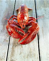 A cooked lobster Stock Photo - Premium Royalty-Freenull, Code: 659-06187549