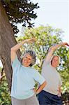 Elderly couple are stretching in a park Stock Photo - Premium Royalty-Free, Artist: ableimages, Code: 6109-06195453