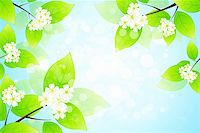 Green Leaves and flowers Stock Photo - Royalty-Freenull, Code: 400-06200321