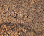 Detail view of stack of logs Stock Photo - Premium Royalty-Free, Artist: Blend Images, Code: 649-06304791