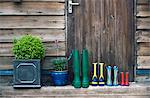 Rain boots and plants on porch Stock Photo - Premium Royalty-Free, Artist: Siephoto, Code: 649-06304898