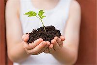 Girl holding seedling outdoors Stock Photo - Premium Royalty-Freenull, Code: 649-06305098