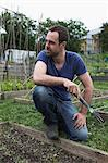 Man working in allotment Stock Photo - Premium Royalty-Free, Artist: Robert Harding Images, Code: 649-06305202
