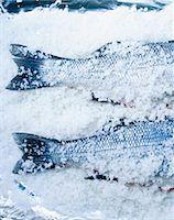 Two bass in salt Stock Photo - Premium Royalty-Freenull, Code: 659-06306764