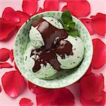 Mint chocolate chip ice cream in a bowl surrounded by rose petals Stock Photo - Premium Royalty-Free, Artist: Raimund Linke, Code: 659-06307472