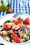 Panzanella (Italian bread salad) Stock Photo - Premium Royalty-Freenull, Code: 659-06307709