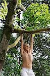 young boy in tree Stock Photo - Premium Royalty-Freenull, Code: 6106-06310893