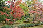 Autumn colours in garden of Kinkakuji, Kyoto, Japan Stock Photo - Premium Rights-Managed, Artist: Oriental Touch, Code: 855-06314401