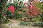 Autumn colours in garden of Kinkakuji, Kyoto, Japan Stock Photo - Premium Rights-Managed, Artist: Oriental Touch, Code: 855-06314402