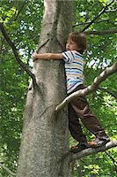 Boy standing in tree Stock Photo - Premium Royalty-Freenull, Code: 632-06317592