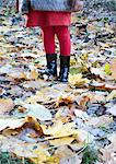 Girl standing on autumn leaves, low section Stock Photo - Premium Royalty-Free, Artist: CulturaRM, Code: 632-06317944