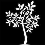 Beautiful art tree silhouette isolated on white background Stock Photo - Royalty-Free, Artist: inbj                          , Code: 400-06326969