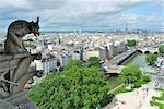 View of Paris from the tower of Notre Dame Stock Photo - Royalty-Free, Artist: TatyanaSavvateeva             , Code: 400-06330048