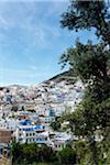 Overview of City, Chefchaouen, Chefchaouen Province, Tangier-Tetouan Region, Morocco Stock Photo - Premium Rights-Managed, Artist: Nico Tondini, Code: 700-06334567