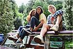 Portrait of Friends Sitting on Roof of Car Stock Photo - Premium Rights-Managed, Artist: Ty Milford, Code: 700-06334617