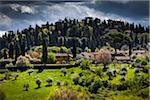 Homes and Hills Surrounding Florence, Tuscany, Italy Stock Photo - Premium Rights-Managed, Artist: R. Ian Lloyd, Code: 700-06334652