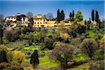 Homes and Hills Surrounding Florence, Tuscany, Italy Stock Photo - Premium Rights-Managed, Artist: R. Ian Lloyd, Code: 700-06334653