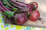 Beetroot Stock Photo - Premium Royalty-Free, Artist: Kablonk! RM, Code: 614-06336279