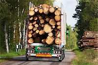 Truck carrying timber Stock Photo - Premium Royalty-Freenull, Code: 6102-06336510