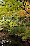 Japanese garden in autumn, Senzen-in temple, Ohara, Kyoto, Japan Stock Photo - Premium Rights-Managed, Artist: Oriental Touch, Code: 855-06338278