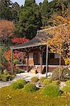 Main hall, Jakkou-in temple in autumn, Ohara, Kyoto, Japan Stock Photo - Premium Rights-Managed, Artist: Oriental Touch, Code: 855-06338288