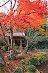 Bell tower, Jakkou-in temple in autumn, Ohara, Kyoto, Japan Stock Photo - Premium Rights-Managed, Artist: Oriental Touch, Code: 855-06338292