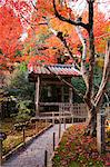 Bell tower, Jakkou-in temple in autumn, Ohara, Kyoto, Japan Stock Photo - Premium Rights-Managed, Artist: Oriental Touch, Code: 855-06338293