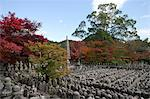 Stone pagodas,  Adashino Nenbutsu-dera Temple, Sagano in autumn, Kyoto, Japan Stock Photo - Premium Rights-Managed, Artist: Oriental Touch, Code: 855-06338325