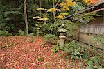 Japanese garden in Autumn, Giou-ji Temple, Sagano, Kyoto, Japan Stock Photo - Premium Rights-Managed, Artist: Oriental Touch, Code: 855-06338391