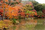 Japanese garden of Rokuon-ji Temple (Kinkakuji) in autumn, Kyoto, Japan Stock Photo - Premium Rights-Managed, Artist: Oriental Touch, Code: 855-06338443