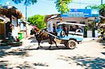 Cidomo, a horse and cart on Gili Trawangan, Gili Islands, Indonesia, Southeast Asia, Asia Stock Photo - Premium Rights-Managed, Artist: Robert Harding Images, Code: 841-06341127