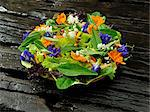 Organic salad with edible flowers, Philippines, Southeast Asia, Asia Stock Photo - Premium Rights-Managed, Artist: Robert Harding Images, Code: 841-06341339