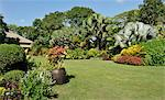 A tropical garden with colorful borders around a large lawn, Philippines, Southeast Asia, Asia Stock Photo - Premium Rights-Managed, Artist: Robert Harding Images, Code: 841-06341366