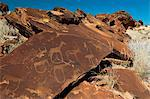 Rock engravings, Huab River Valley, Torra Conservancy, Damaraland, Namibia, Africa Stock Photo - Premium Rights-Managed, Artist: Robert Harding Images, Code: 841-06342215