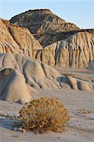 Badlands, Theodore Roosevelt National Park, North Dakota, United States of America, North America Stock Photo - Premium Rights-Managednull, Code: 841-06342643