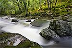 Rocky River Plym flowing through Dewerstone Wood in summer, Dartmoor National Park, Devon, England, United Kingdom, Europe Stock Photo - Premium Rights-Managed, Artist: Robert Harding Images, Code: 841-06343394