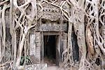 Ta Prohm, Angkor Archaeological Park, UNESCO World Heritage Site, Siem Reap, Cambodia, Indochina, Southeast Asia, Asia Stock Photo - Premium Rights-Managed, Artist: Robert Harding Images, Code: 841-06343847