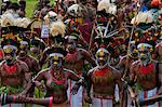 Colourfully dressed and face painted local tribes celebrating the traditional Sing Sing in the Highlands of Papua New Guinea, Pacific Stock Photo - Premium Rights-Managed, Artist: Robert Harding Images, Code: 841-06344096