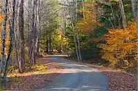 Grafton, Vermont, New England, United States of America, North America Stock Photo - Premium Rights-Managednull, Code: 841-06344266